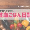 【挑戦】鉄分の多い食事はどれだ?|貧血ごはん日記・1ヶ月経過報告